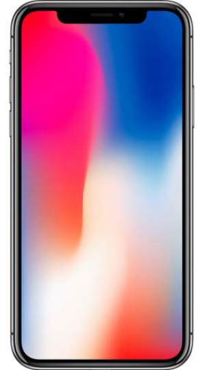 APPLE iPhone X Gris Sidéral